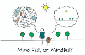 mind full or mindful meditation