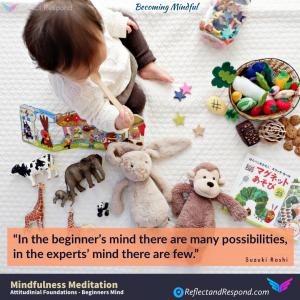 MINDFULNESS - BEGINNERS MIND