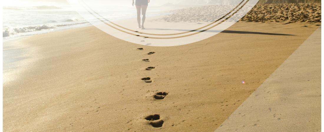 mindful Walking mindfulness Meditation
