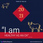 I am healthy as an Ox