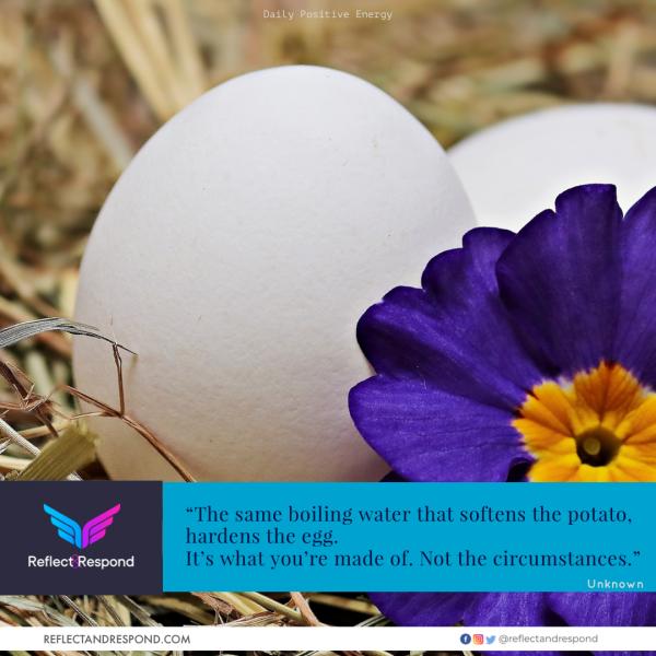 leadership-quotes-positive-egg-potato
